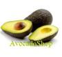 Avocados kaufen - AvocadoShop