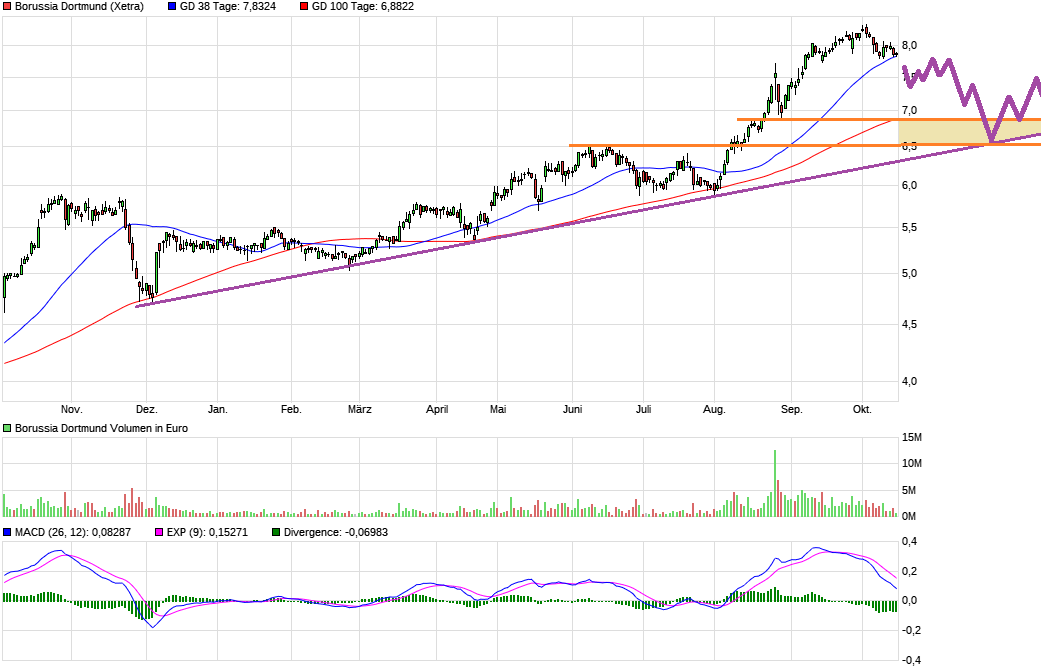 chart_year_borussiadortmund.png