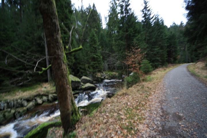 20141224_schwarzwassertal_007_(small).jpg