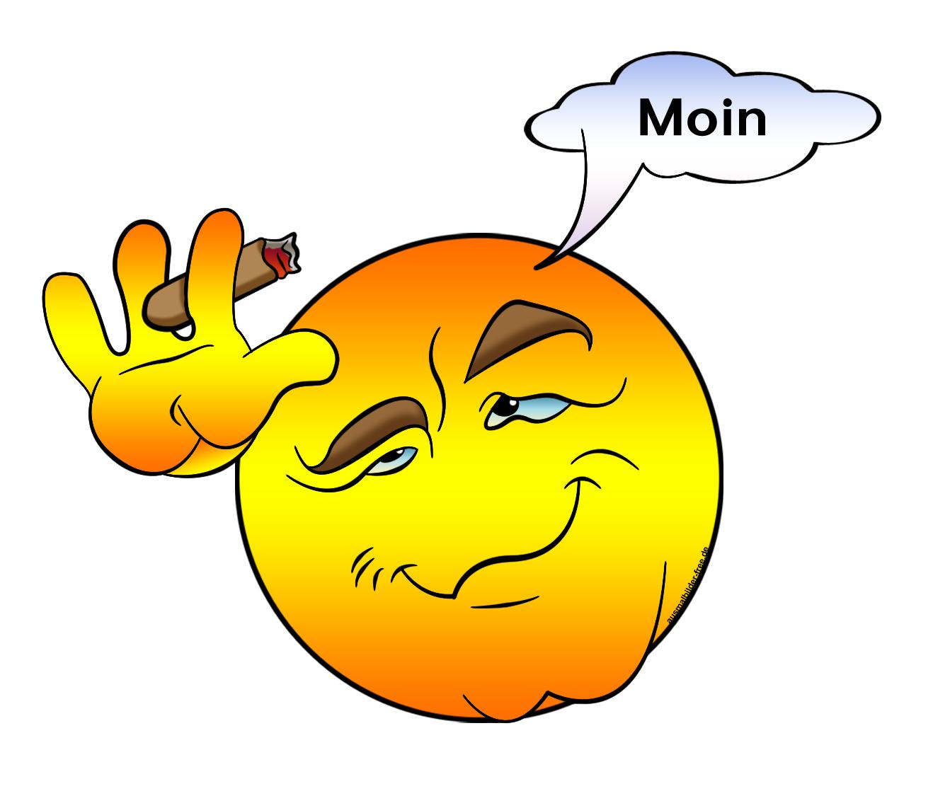 094-smiley-sprueche-sprichwoerter-zitate-moin-....png