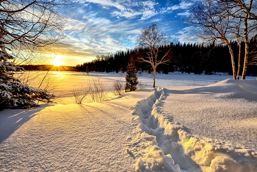 winter-landscape-636634__340.jpg