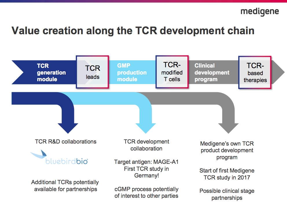 mdg-tcr-values-201708.jpg