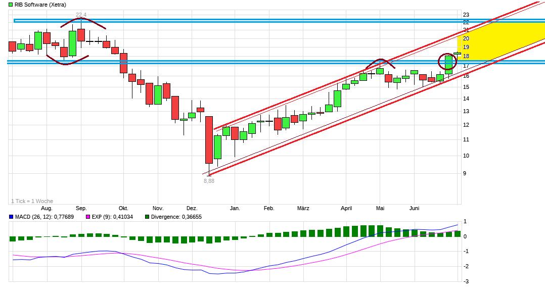 chart_year_ribsoftware.png