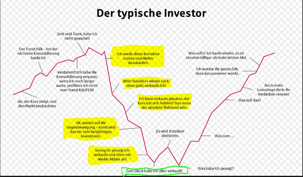 fehlverhalten_investoren.png