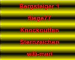 12_fehl.png