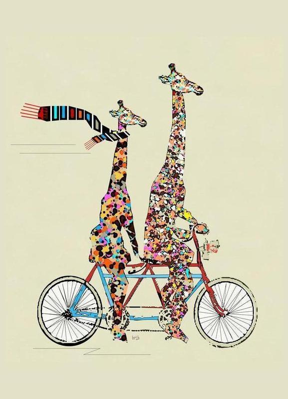giraffes-days-lets-tandem-brian-buckley-....jpg