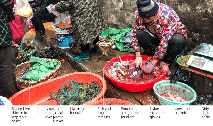 wuhan_food_market_kopie.jpg