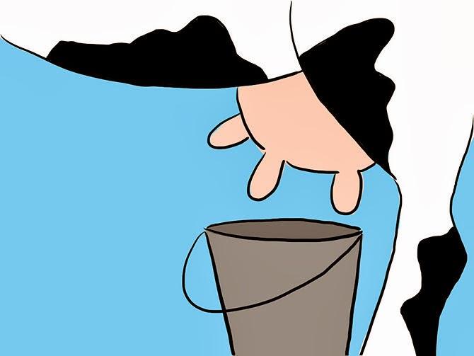 cowudder-bucket.jpg