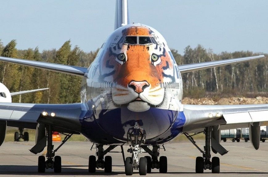 boeing-747-with-amur-tiger-on-the-nose-....jpg
