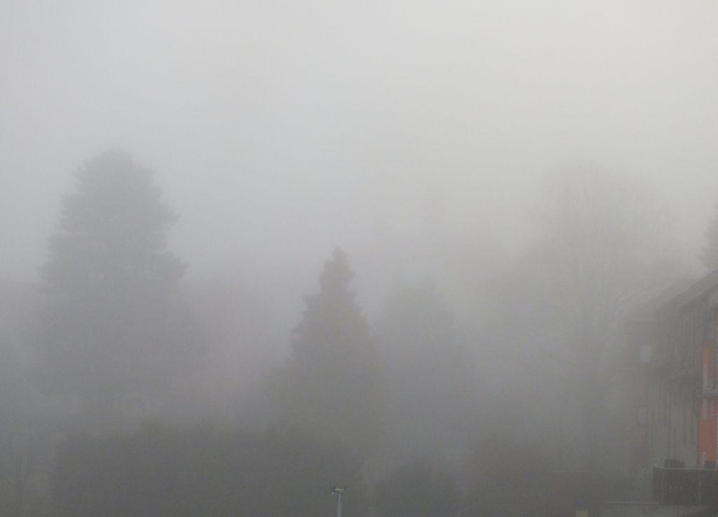 nebel02.jpg