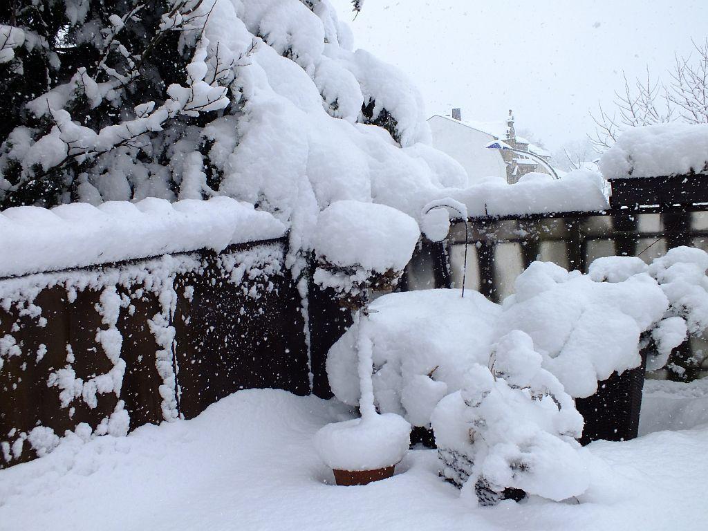 winter01d.jpg