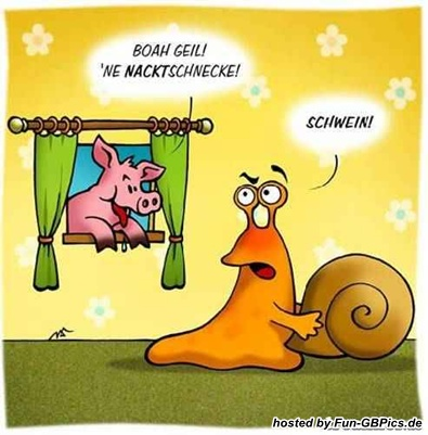 lustige_tierbilder_gb_pic_11.jpg