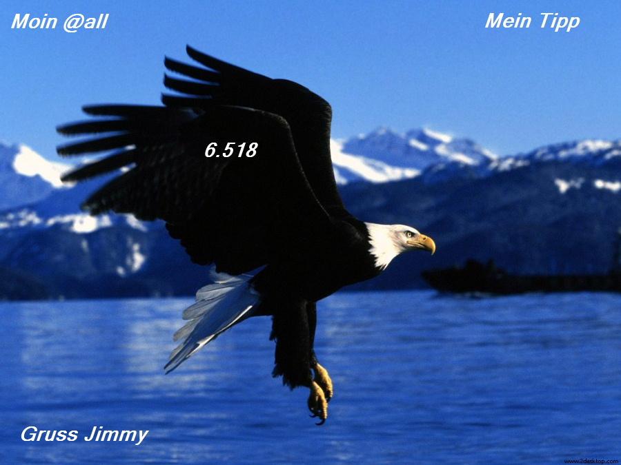 easy_landing_6868_1024_768--.jpg
