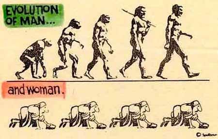 evolution_comic.jpg