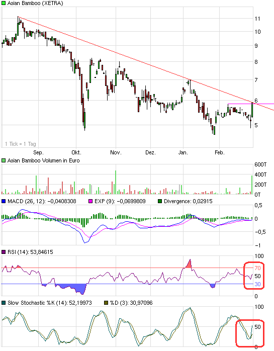 chart_halfyear_asian_bamboo.png