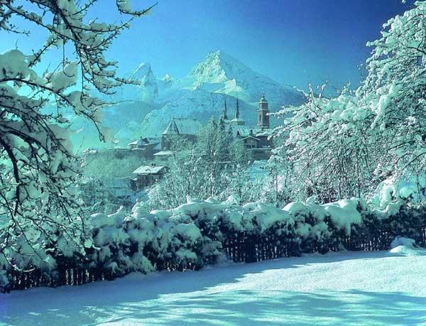 bo_winter.jpg