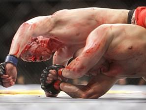 ultimate_fighting1_117731d.jpg
