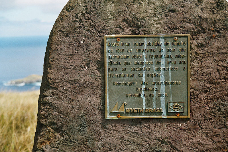 rapamycin_plaque_on_easter_island.jpg