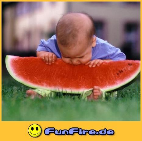 Melonenessen.jpg