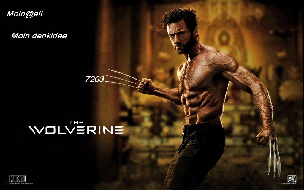 the_wolverine_2013_movie-wide-.jpg