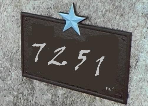 7251.jpg