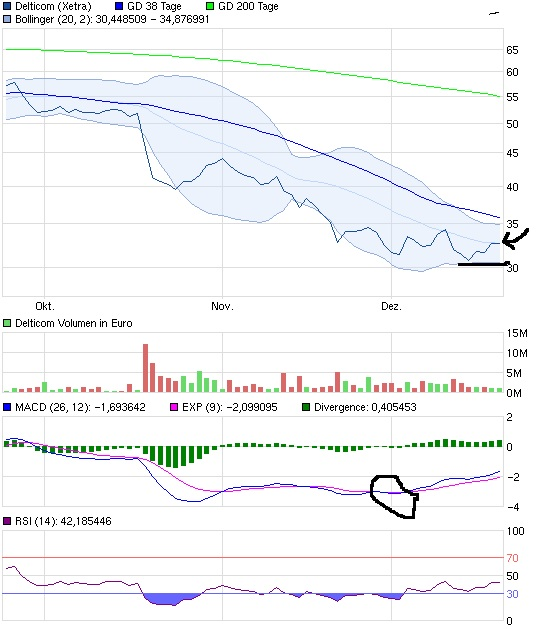 chart_quarter_delticom.jpg