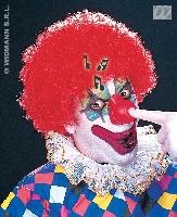 clownsneus_met_geluid_1353842640_thumb_1.jpg