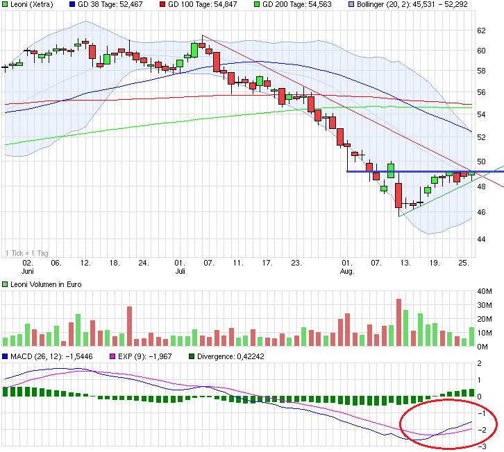 chart_quarter_leoni.png