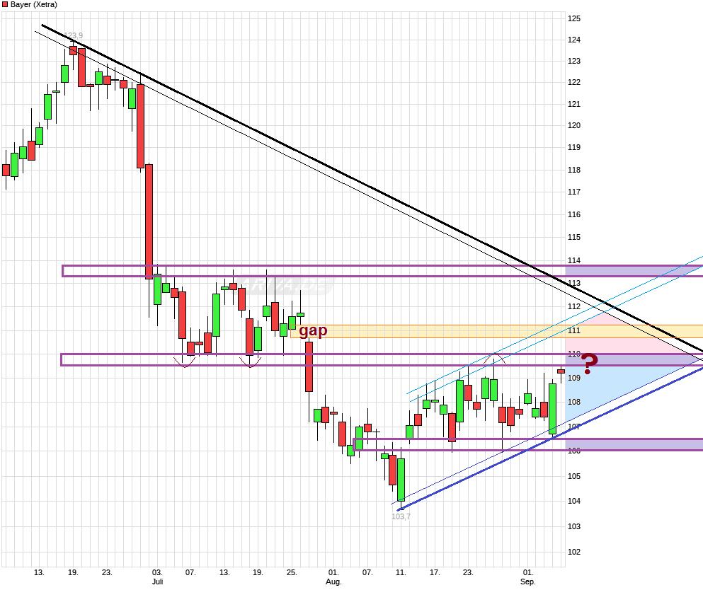 chart_quarter_bayer.png