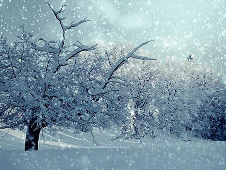 winter-1861704__340.jpg