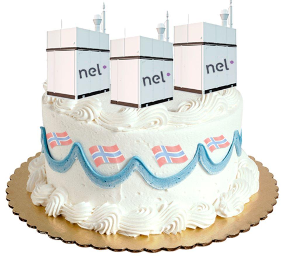 nel-torte.jpg