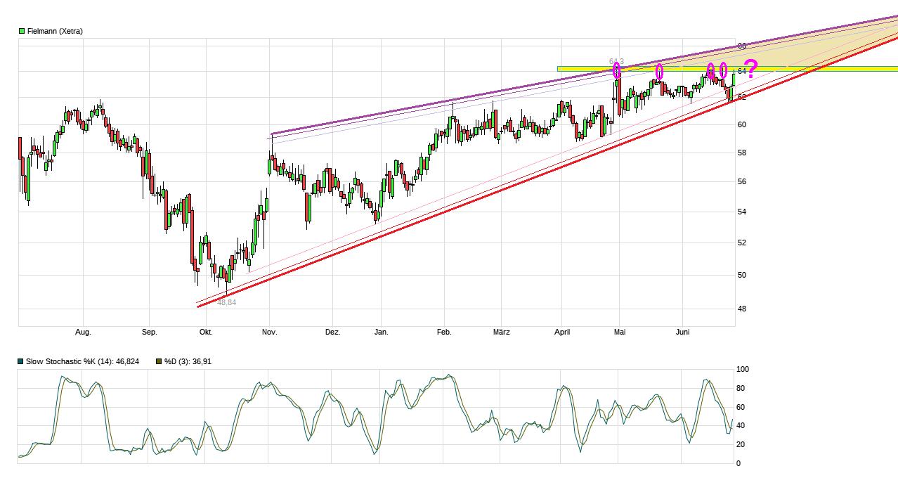chart_year_fielmann--.png