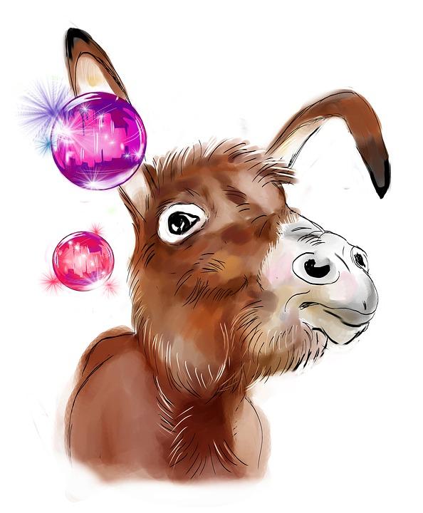 donkey-3451342_960_720.jpg