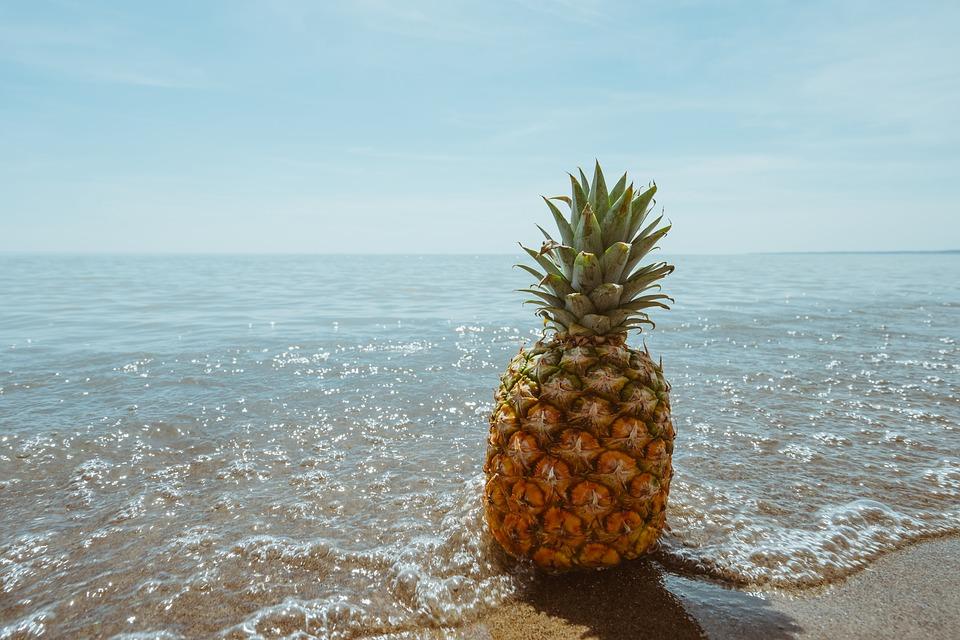 beach-1834329_960_720.jpg