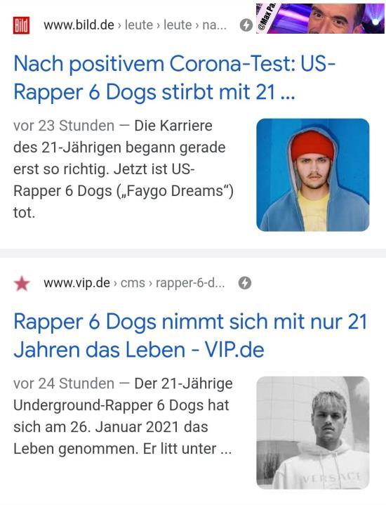 6_dogs.jpg