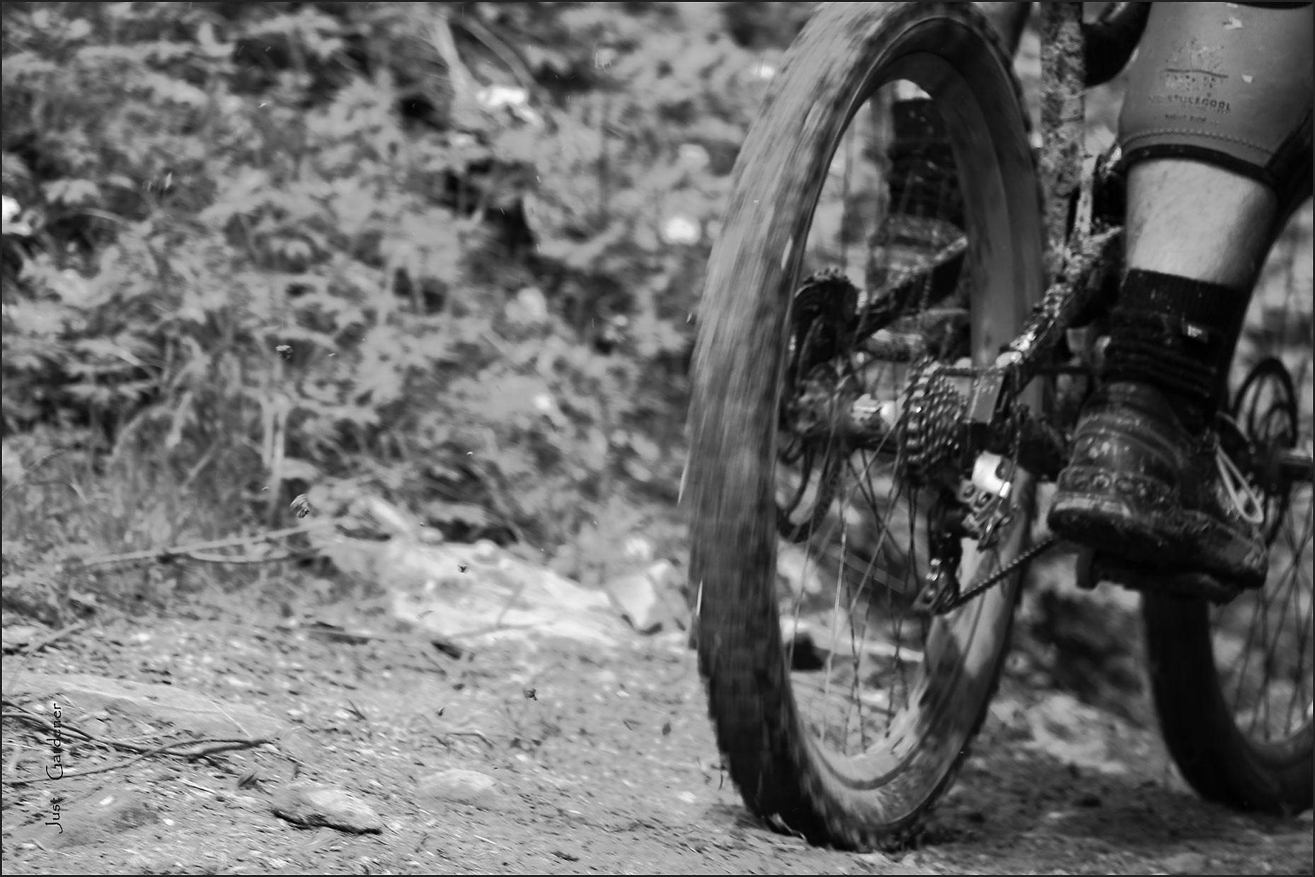 2510919_002-downhill-i-01-sw.jpg