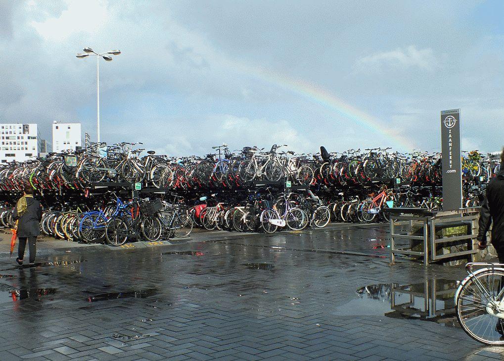 fahrradparkplatz.jpg