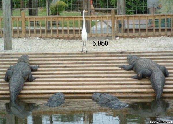 tmb_hornoxe_com_picdump35_23.jpg