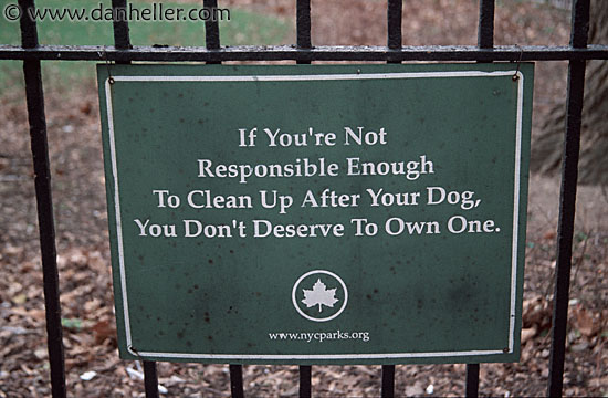 dog-sign-big.jpg