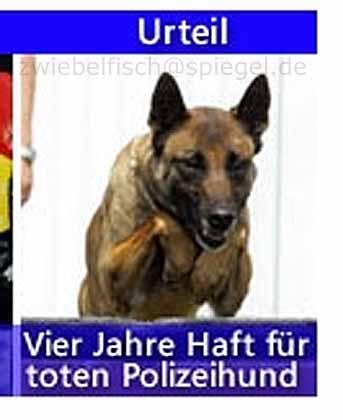 polizeihund.jpg