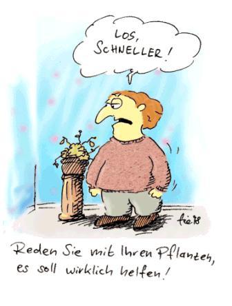 mit_den_blumen_reden_161525.jpg