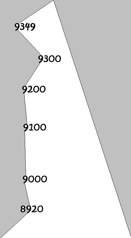 9349.jpg